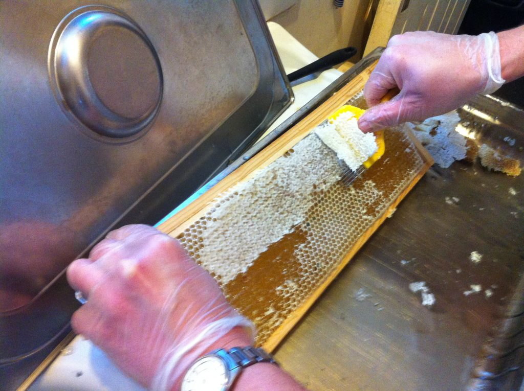 Uncapping honeycomb.